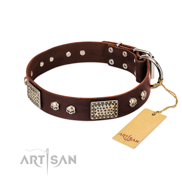 Easy wearing leather dog collar for daily walking your doggie