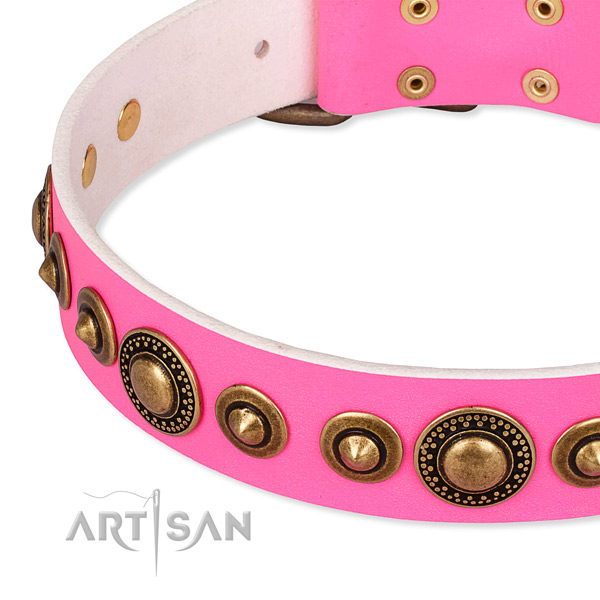 Reliable full grain leather dog collar made for your handsome doggie