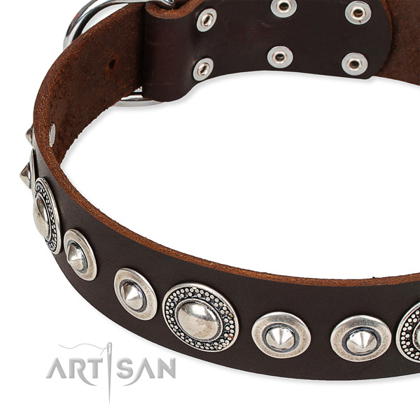 Daily walking decorated dog collar of quality full grain natural leather