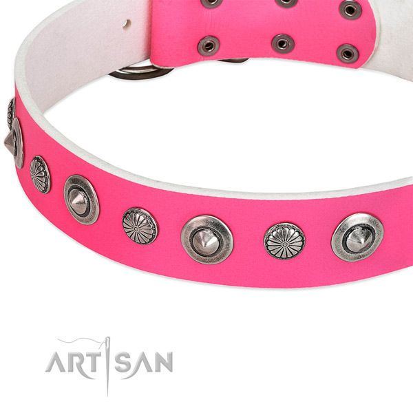 Natural leather collar with corrosion resistant traditional buckle for your lovely canine