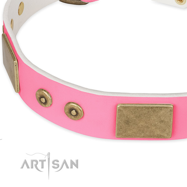 Full grain leather dog collar with decorations for everyday walking