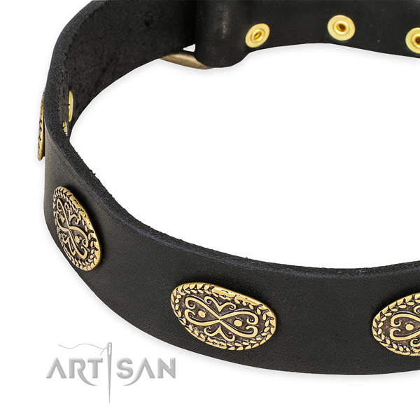 Remarkable full grain leather collar for your beautiful doggie