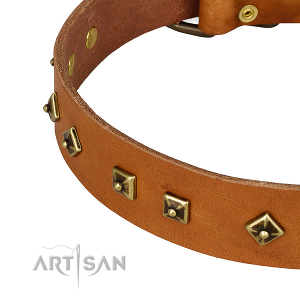 Inimitable full grain genuine leather collar for your beautiful pet