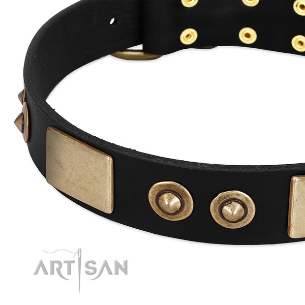 Durable studs on full grain leather dog collar for your doggie