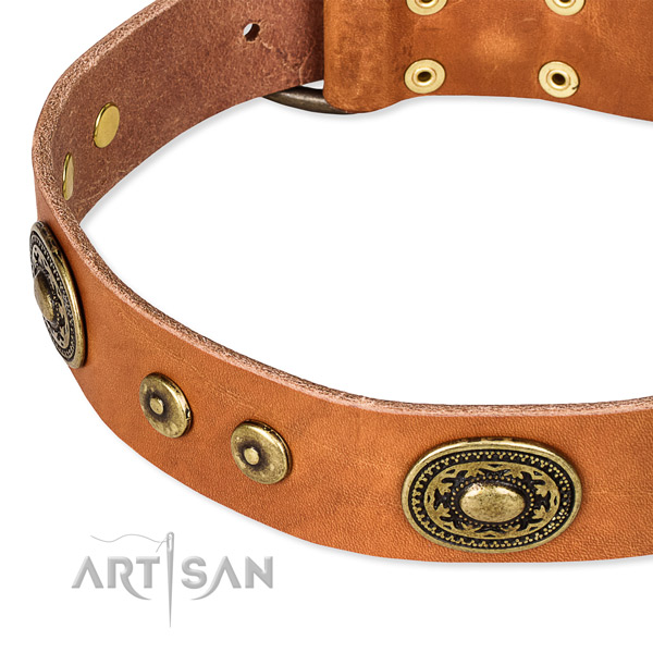 Full grain natural leather dog collar made of best quality material with adornments