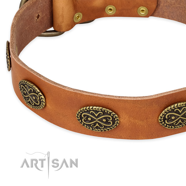 Fine quality full grain genuine leather collar for your handsome dog