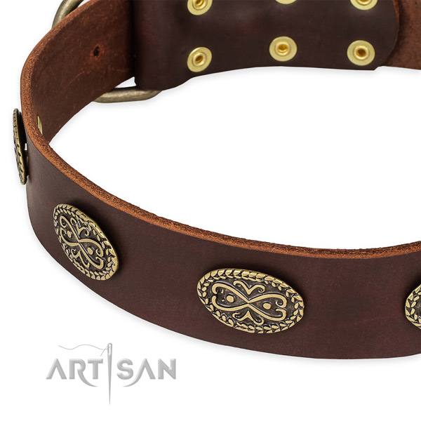 Embellished leather collar for your beautiful dog