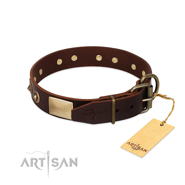 Durable studs on basic training dog collar