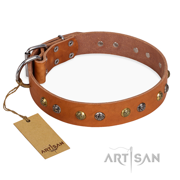 Basic training incredible dog collar with rust-proof buckle