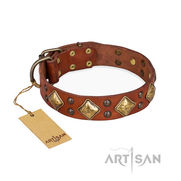 Stylish walking adjustable dog collar with corrosion proof buckle
