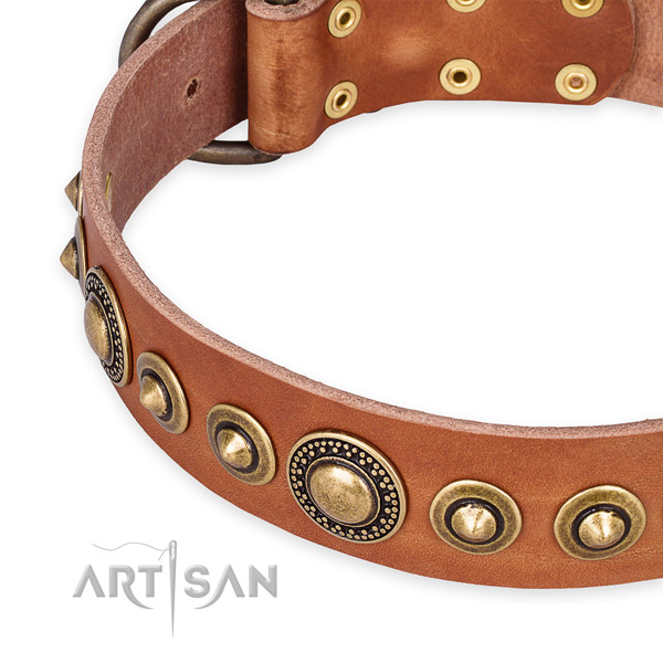 Gentle to touch full grain genuine leather dog collar made for your impressive pet