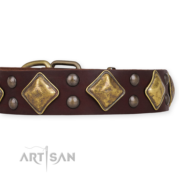 Full grain leather dog collar with designer reliable embellishments