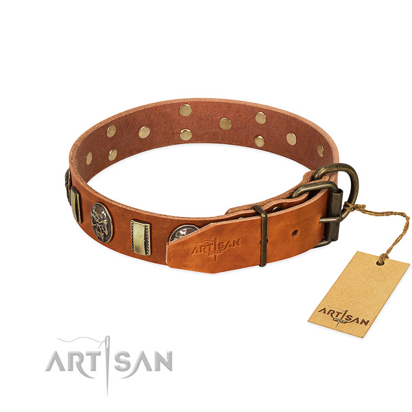 Leather dog collar with corrosion proof fittings and studs