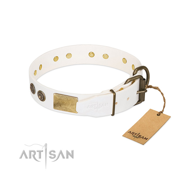 Rust resistant fittings on natural genuine leather collar for stylish walking your doggie