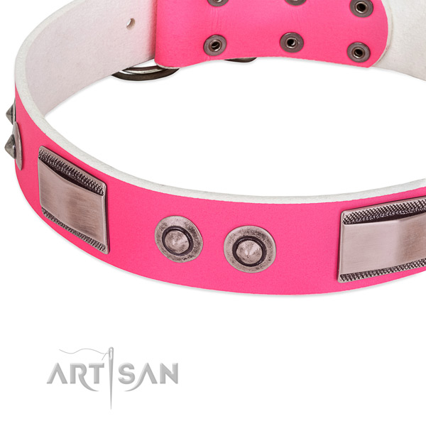 Awesome leather collar with decorations for your doggie