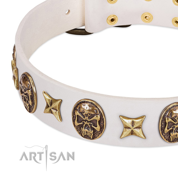Best quality dog collar made for your lovely canine