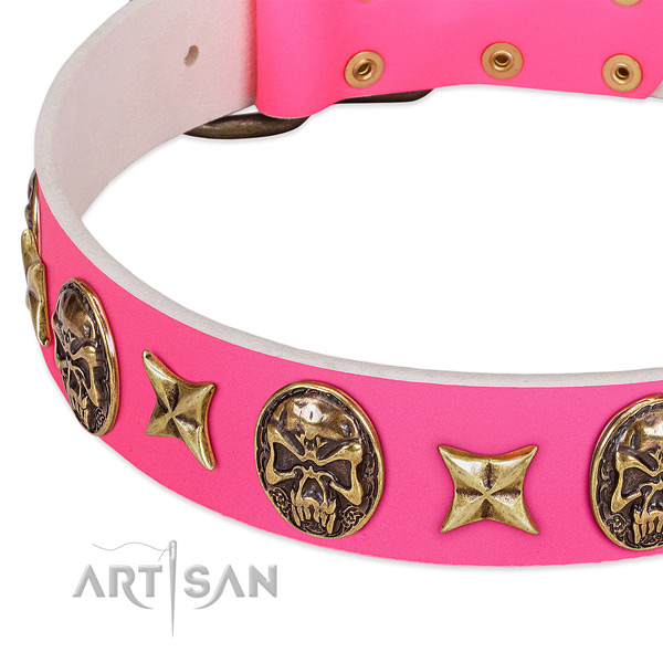 Full grain leather dog collar with significant adornments