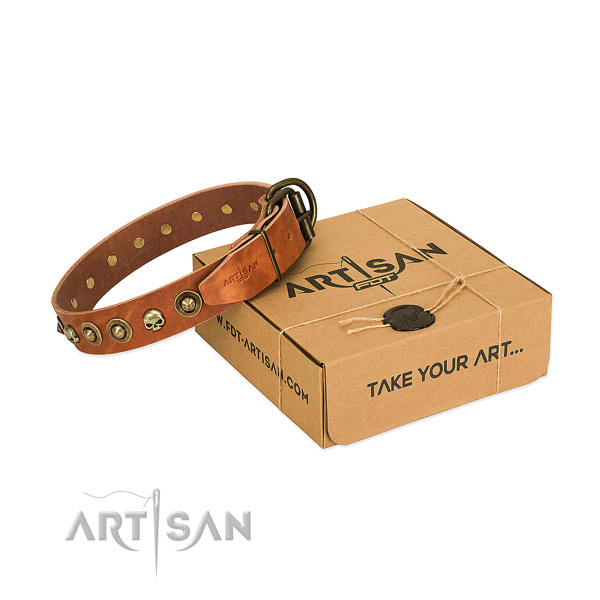 Natural leather collar with exquisite embellishments for your doggie