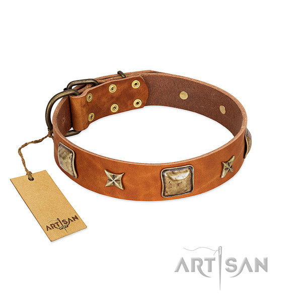 Adorned full grain leather collar for your canine