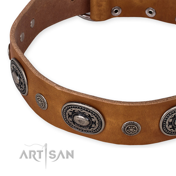 Best quality genuine leather dog collar crafted for your handsome four-legged friend