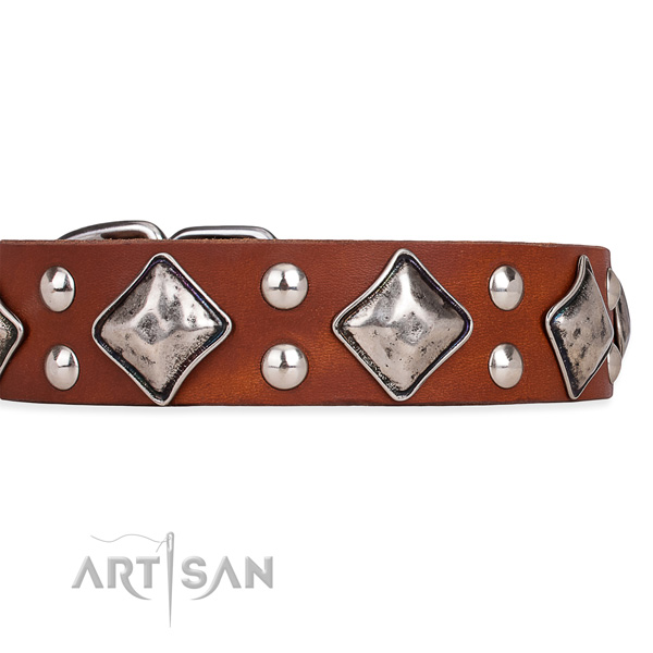 Full grain leather dog collar with stylish design rust-proof embellishments