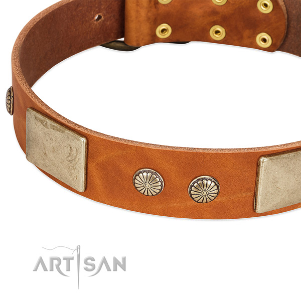 Corrosion resistant traditional buckle on full grain natural leather dog collar for your doggie