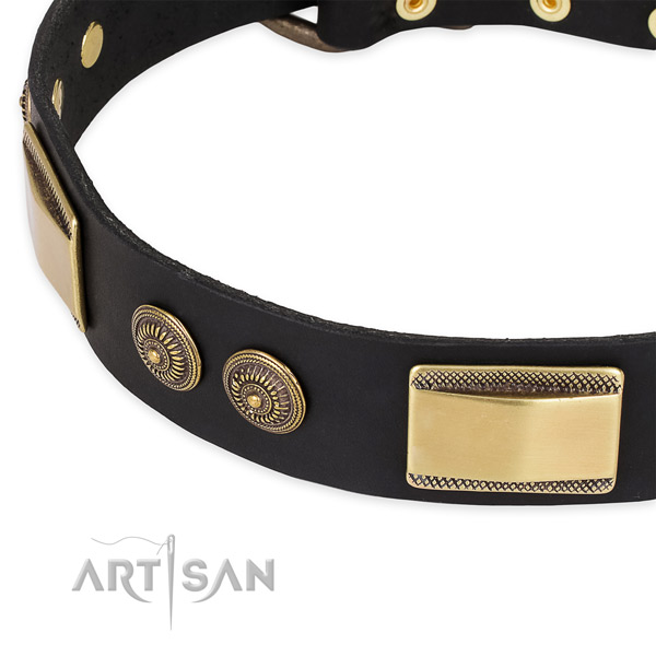 Incredible full grain natural leather collar for your beautiful canine
