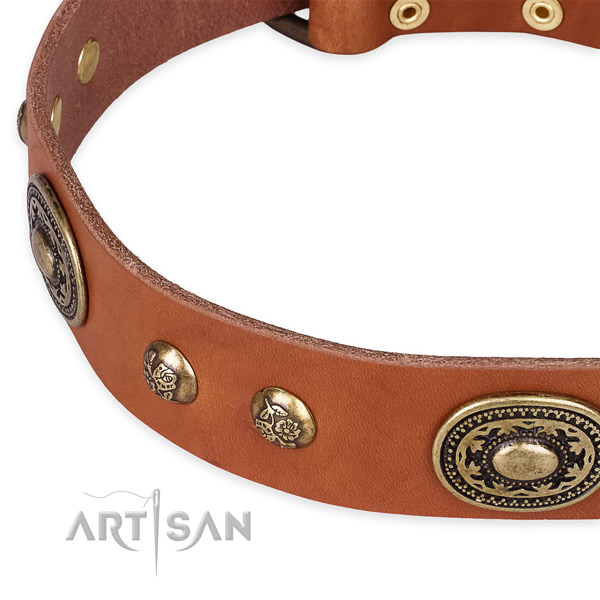 Awesome full grain natural leather collar for your lovely four-legged friend