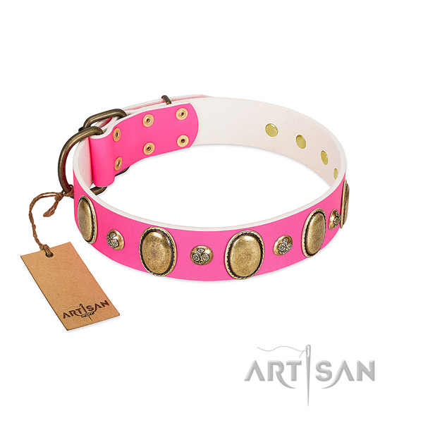 Leather dog collar of high quality material with designer embellishments