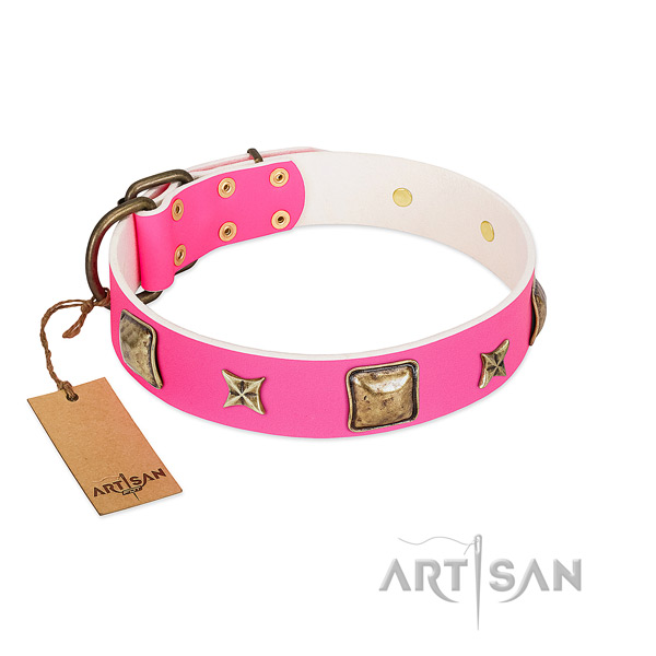 Genuine leather dog collar of soft to touch material with unusual decorations