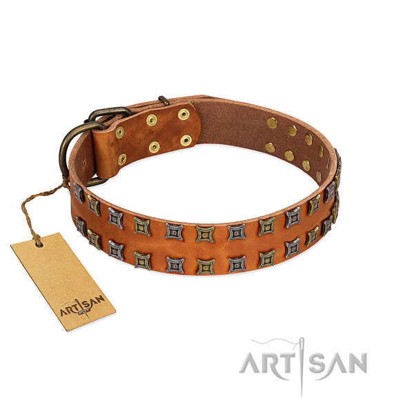Durable full grain leather dog collar with adornments for your four-legged friend