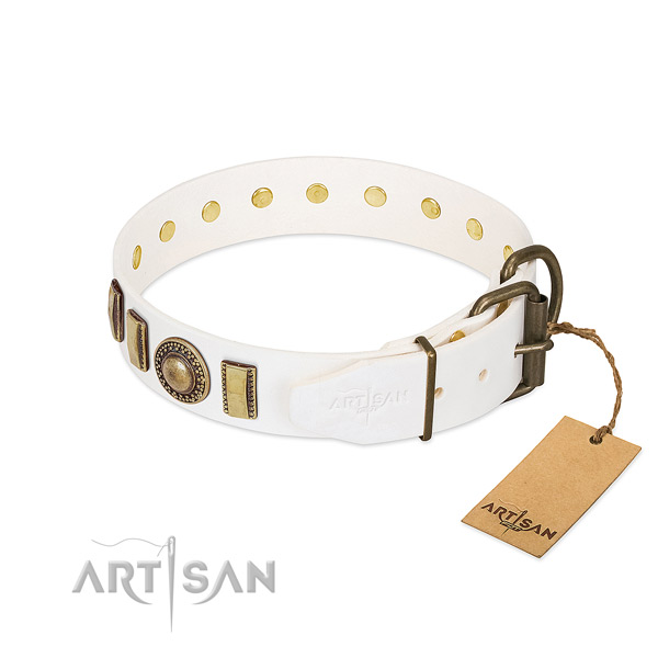 Unusual natural leather dog collar with corrosion proof fittings