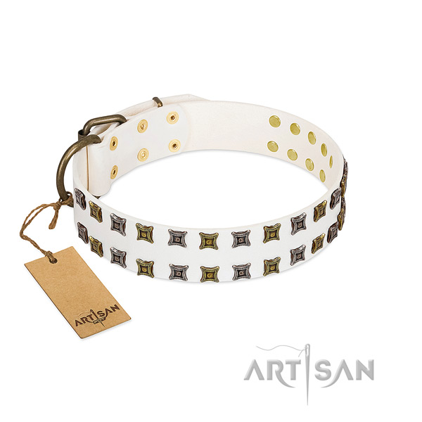 Top notch genuine leather dog collar with embellishments for your four-legged friend
