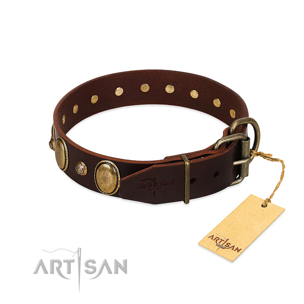 Rust-proof traditional buckle on leather collar for stylish walking your canine