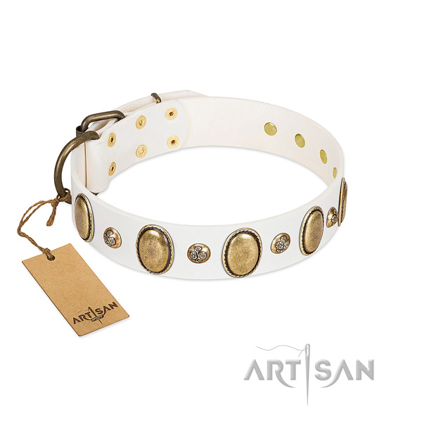 Full grain leather dog collar of gentle to touch material with unusual decorations