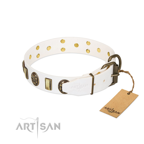Rust-proof hardware on full grain leather collar for fancy walking your doggie