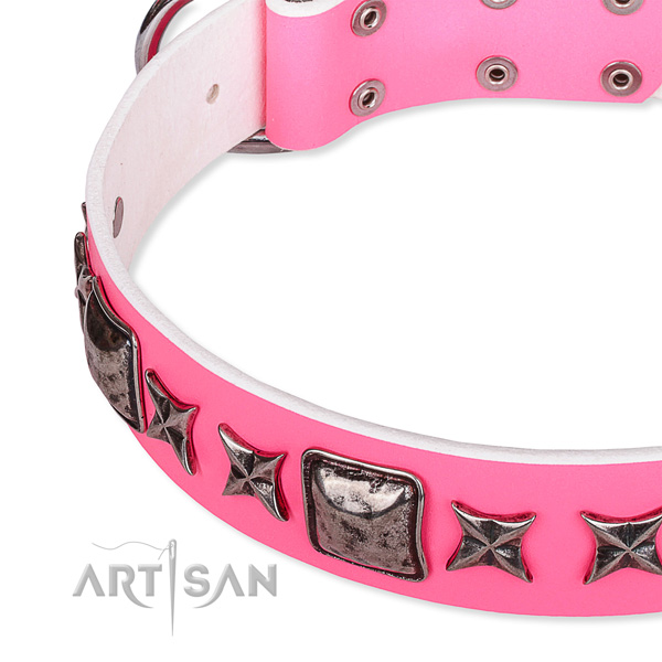 Daily use adorned dog collar of reliable full grain leather