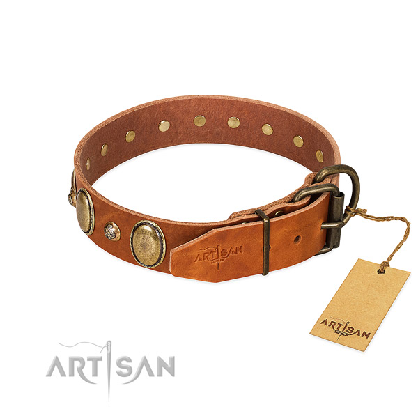 Trendy full grain natural leather dog collar with durable hardware