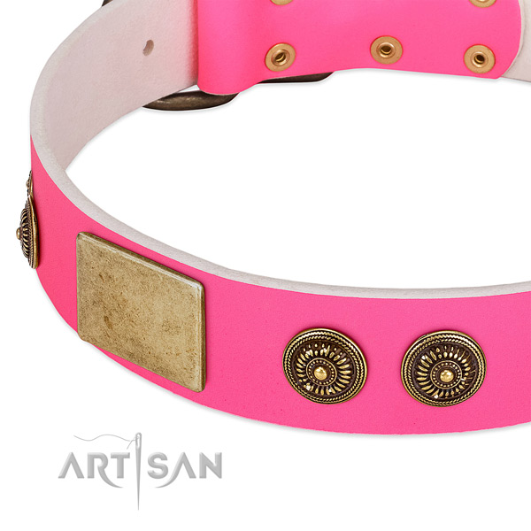 Easy adjustable dog collar handcrafted for your stylish dog