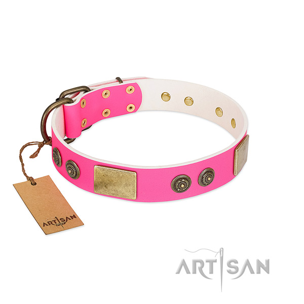 Exceptional full grain natural leather dog collar for easy wearing