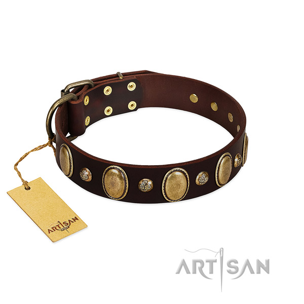 Full grain natural leather dog collar of soft to touch material with significant studs