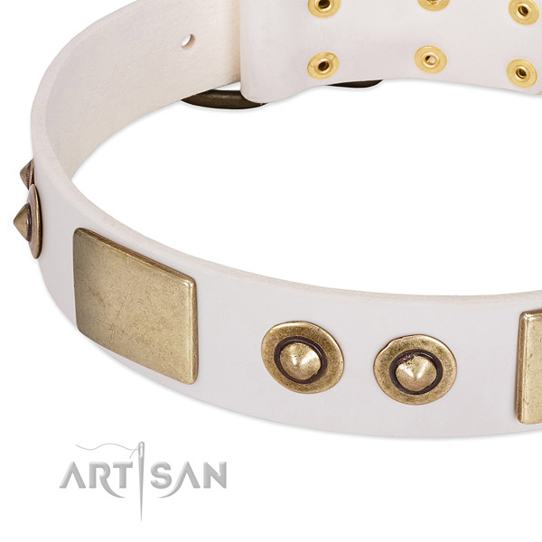 Corrosion resistant adornments on full grain natural leather dog collar for your canine