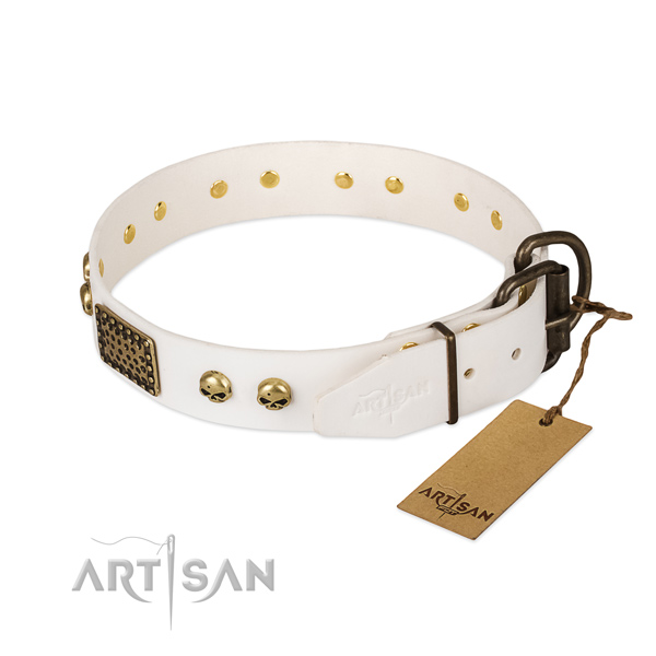 Adjustable leather dog collar for basic training your pet