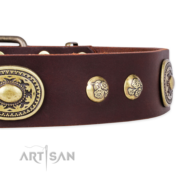 Inimitable full grain natural leather collar for your handsome canine