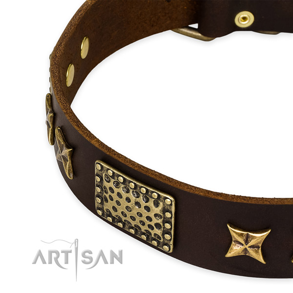 Full grain leather collar with corrosion proof traditional buckle for your impressive dog
