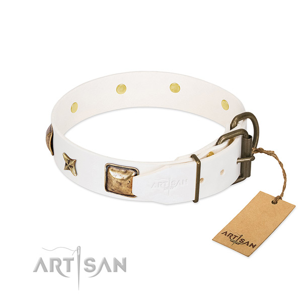 Natural genuine leather dog collar with reliable fittings and embellishments