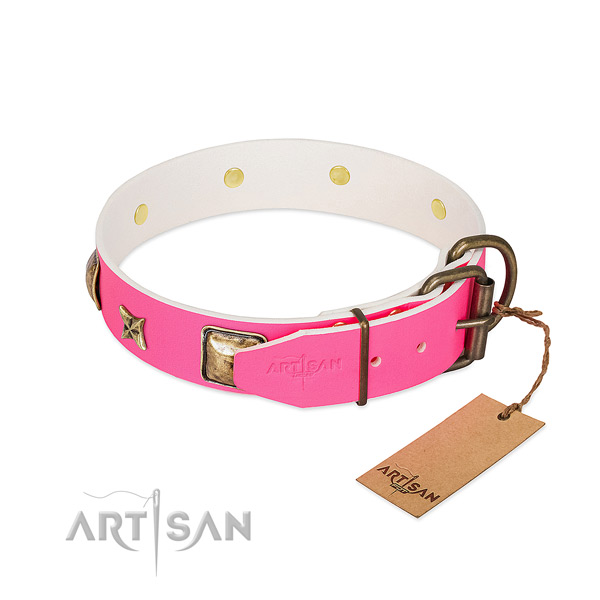Reliable D-ring on full grain natural leather collar for walking your pet