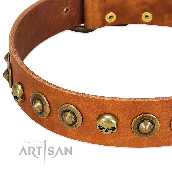 Unusual embellishments on full grain genuine leather collar for your canine