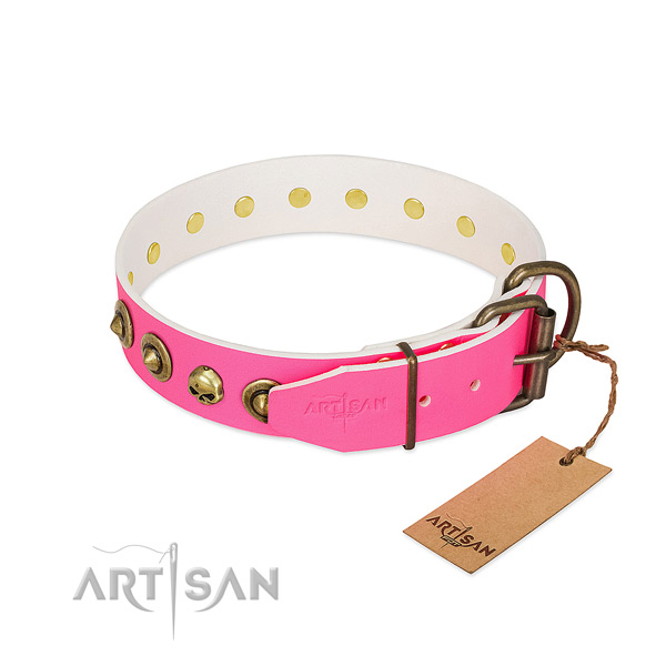 Natural leather collar with trendy adornments for your doggie