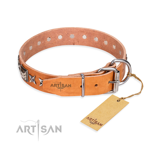 Strong embellished dog collar of full grain natural leather
